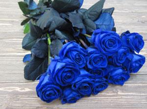 Как сделать цветы синими фото 456